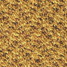 Gold / Yellow Carpet Tile - General Contract